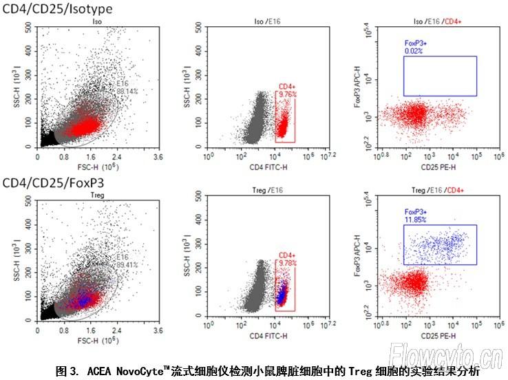 novocytetm流式细胞仪检测调节性t细胞